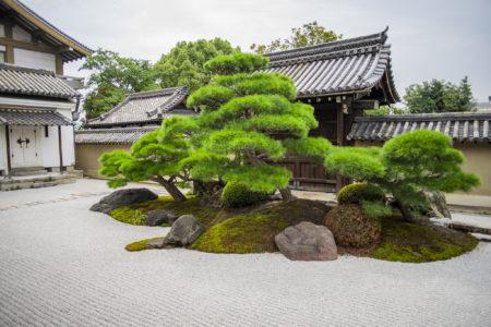 宮本武蔵「鷲の図」「竹林の図」所蔵!国宝「観智院」は忍者寺だった。