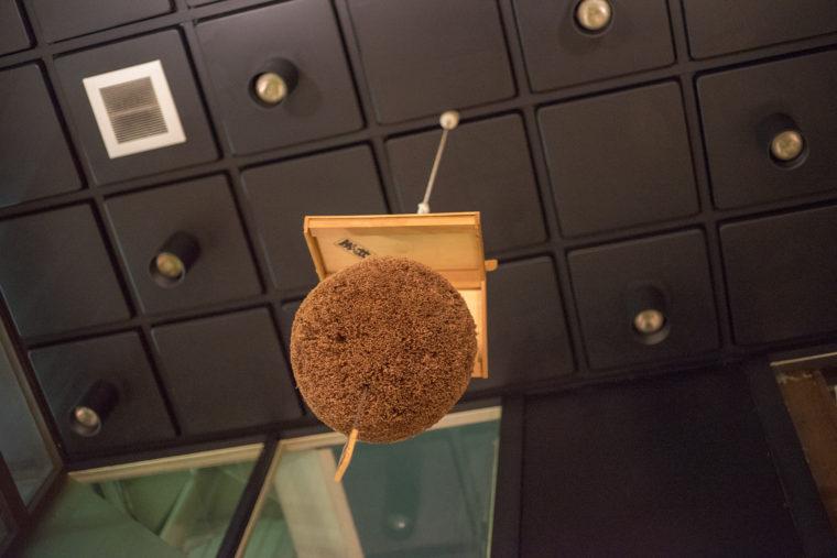 居酒屋酒猫の天井