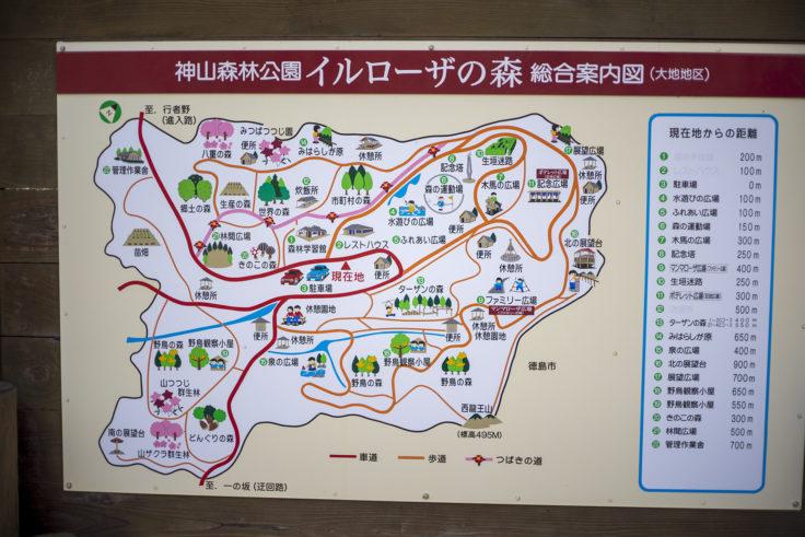 イルローザの森マップ