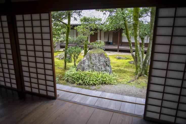 廊下から見た庭