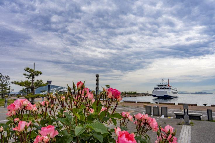 高松港のバラ園