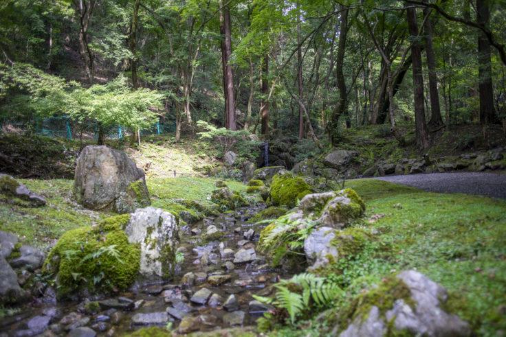 醍醐寺無量寿苑2