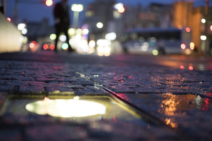 雨の日の玉ボケ