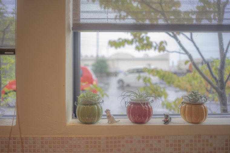 cafe茶蔵の窓