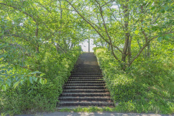 亀鶴公園4