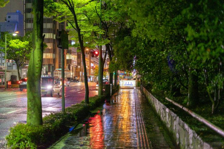 雨の夜スナップ写真2