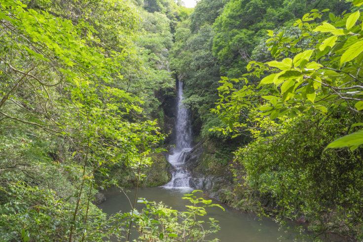虹の滝雌滝