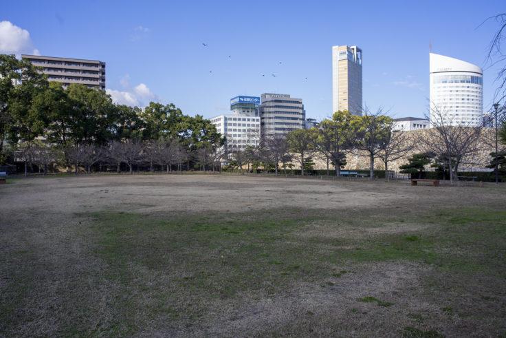 玉藻公園桜の馬場