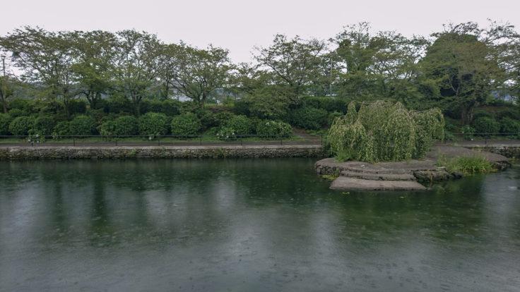 江川の湧水近くの川