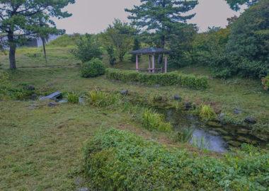 江川の湧水