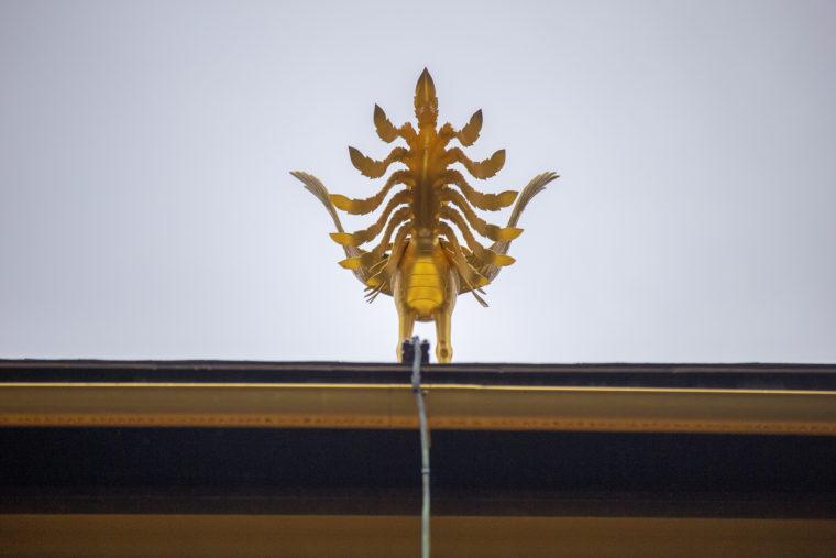 金閣鳳凰の後ろ姿