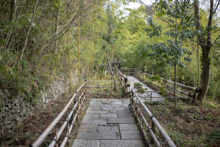 四国村竹の通路