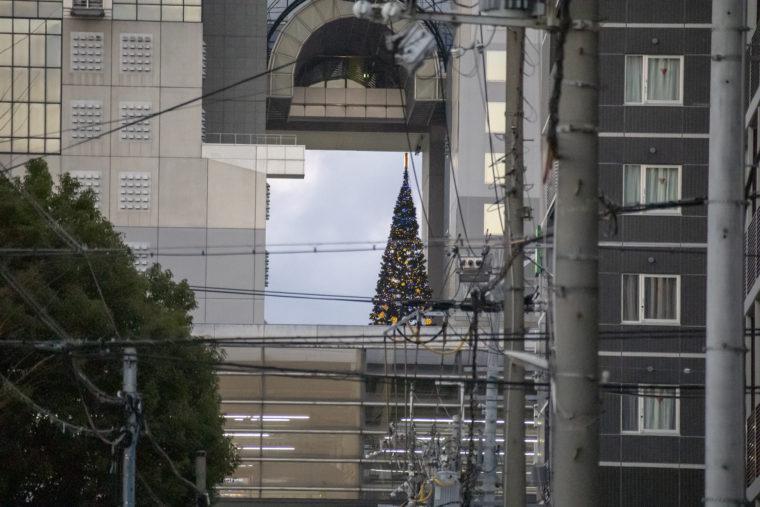 京都駅南側から見えていたクリスマスツリー