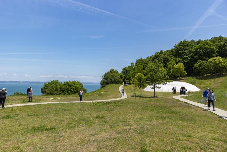 豊島美術館の芝生
