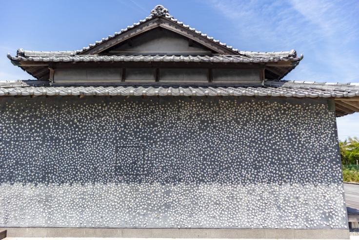 ウミトタの壁