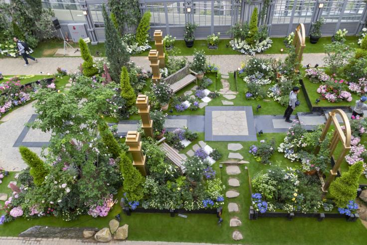 奇跡の星の植物館メインコーナー