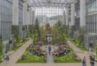 奇跡の星の植物館メインコーナー正面