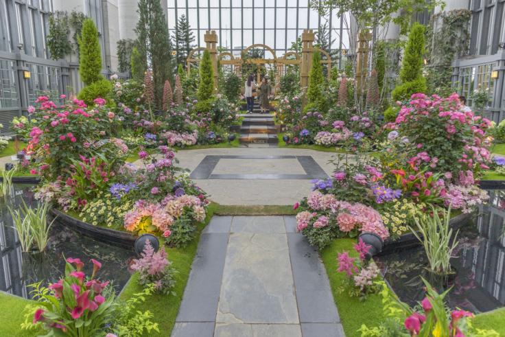 奇跡の星の植物館1
