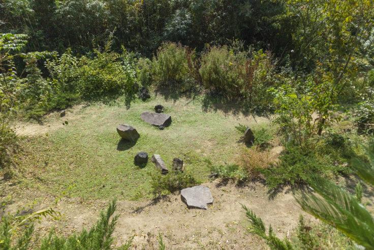 シーボルトガーデンの庭