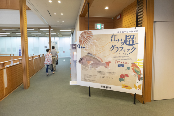 自然に挑む 江戸の超(スーパー)グラフィック―高松松平家博物図譜