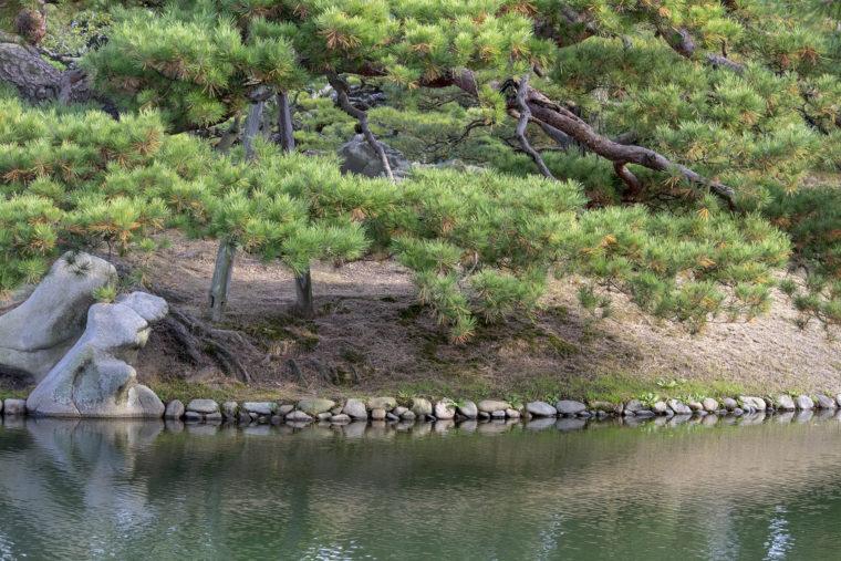 北湖の汀線
