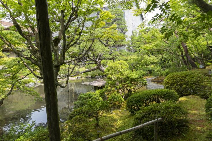 白河院庭園6