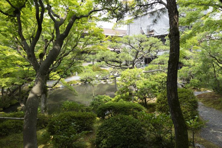 白河院庭園7