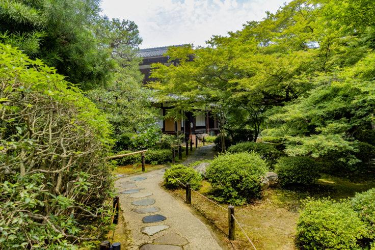 青蓮院門跡奥の庭園