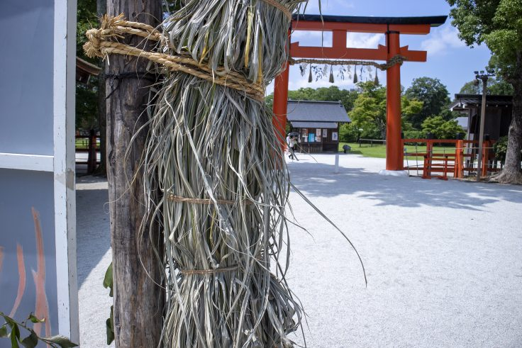 上賀茂神社の茅