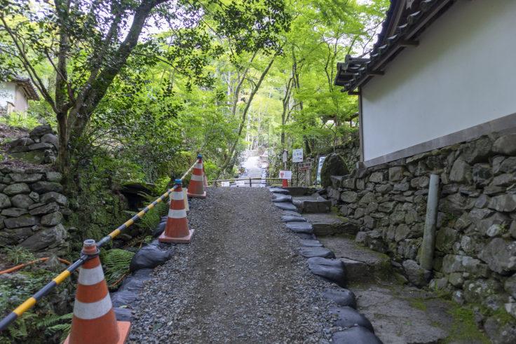 高山寺修復中2