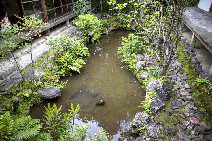 高山寺石水院の池