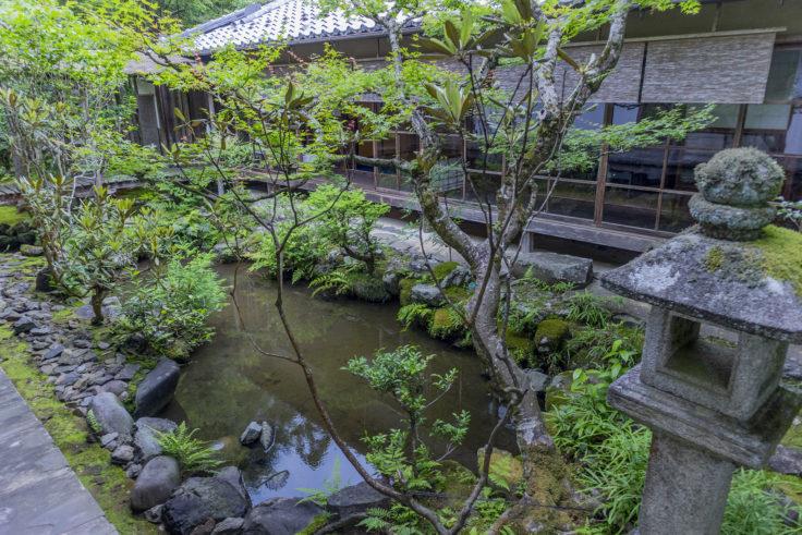 高山寺石水院の庭園横の池