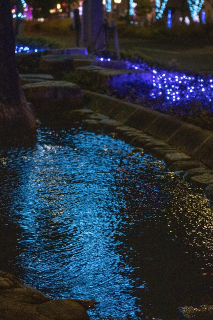 水面に映るイルミネーション2