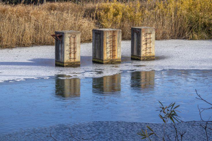 白鳥中央公園の凍った池