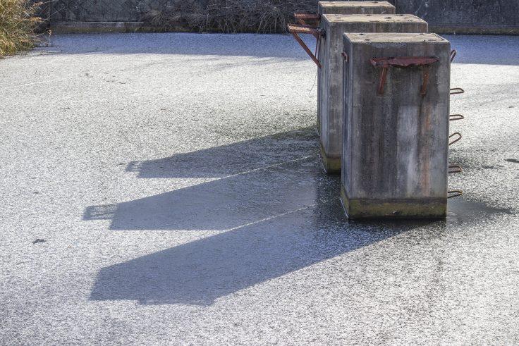 白鳥中央公園の凍った池2