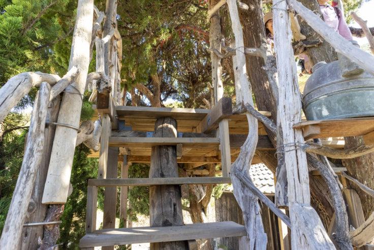 『自然の目「大地から」』階段