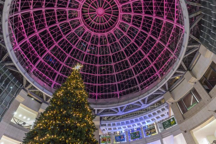 高松中央商店街の巨大クリスマスツリーとドーム