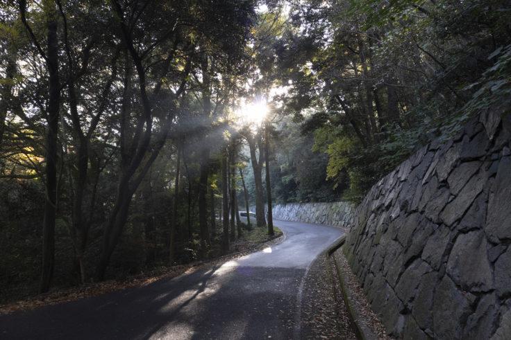 根香寺入り口