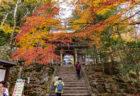 大窪寺の紅葉14