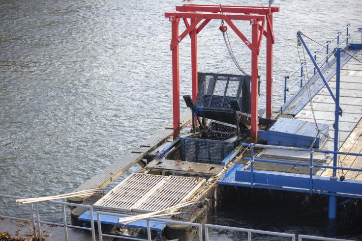 千歳川に設置したインディアン水車2