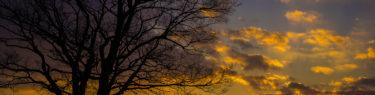 城山の夕焼け