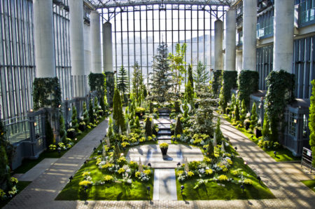 淡路夢舞台奇跡の星の植物館