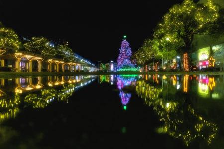 坂出井市民広場のクリスマスツリーリフレクション