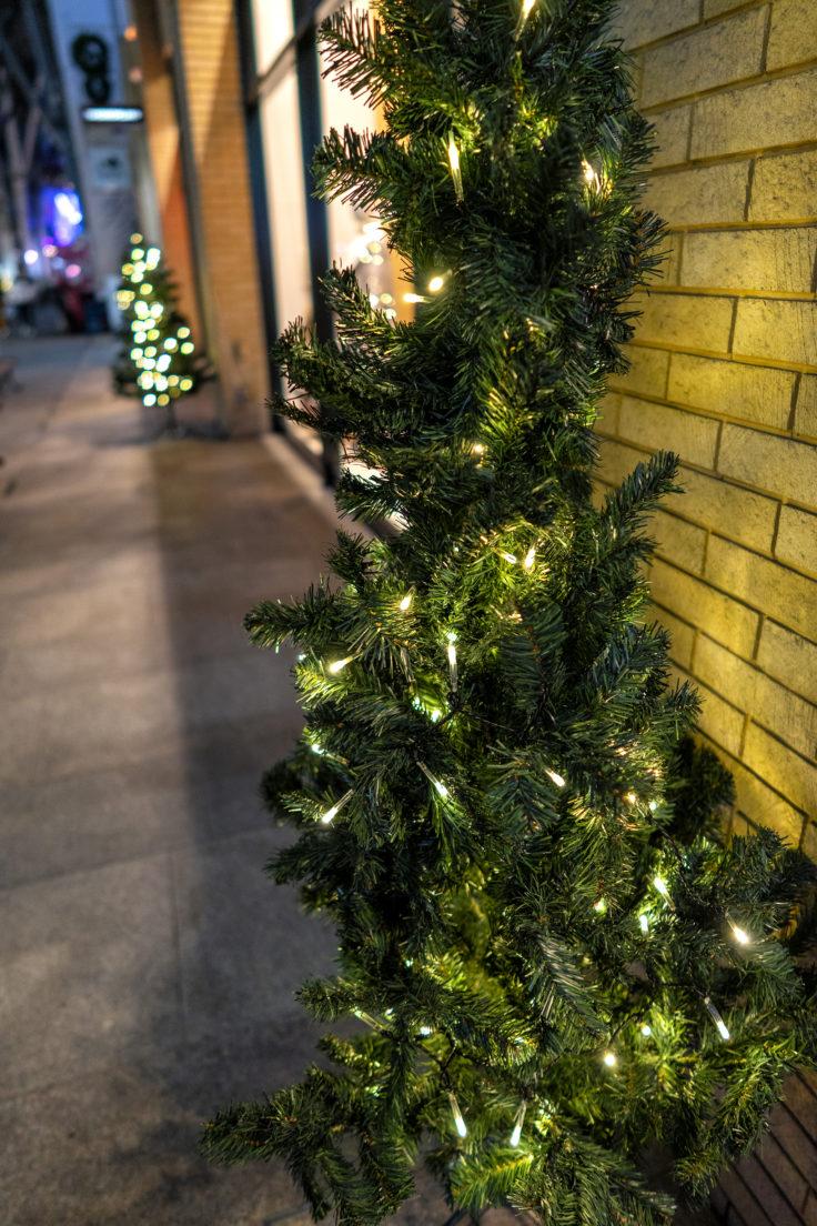 丸亀町のクリスマスツリー