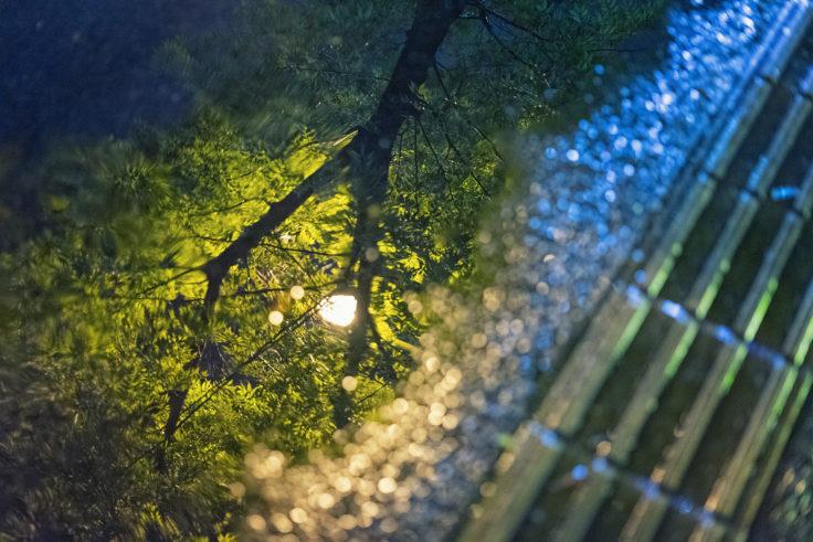 雨の夜リフレクション