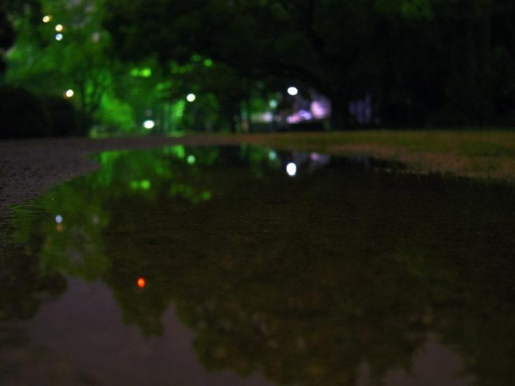 水たまりの反射