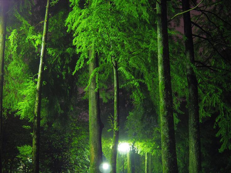 徳島中央公園3