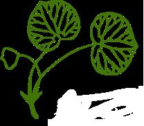上賀茂神社の葵ロゴ